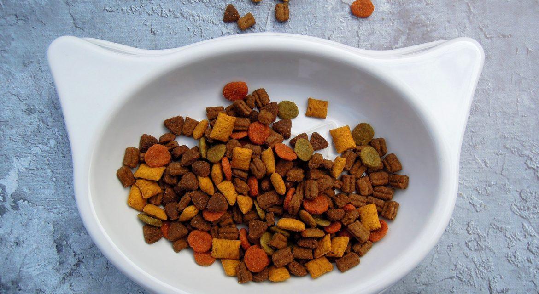 Hochwertiges Katzenfutter – Trockenfutter